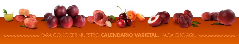 Calendario varietal