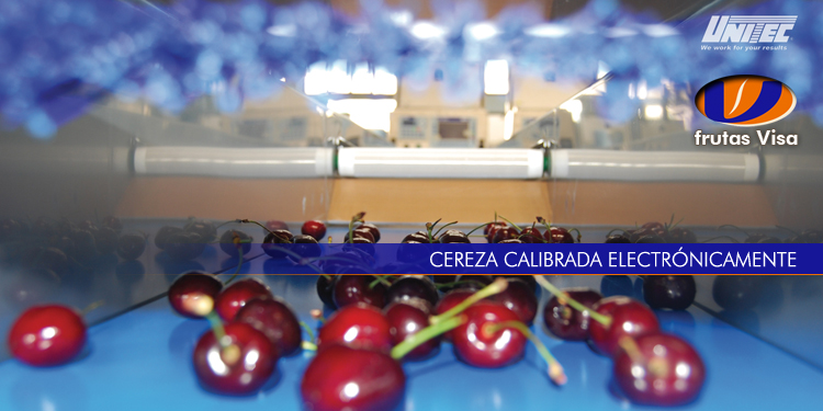 Cereza calibrada electronicamente